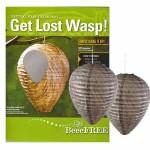 927932_get-lost-wasp
