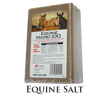 horse_salt
