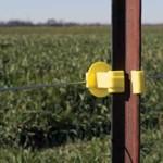 954436_17GA-elect-fence-wire
