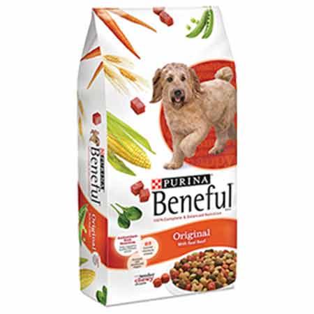Purina Beneful Healthy Puppy Dry Dog Food   Lb